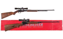 Two Winchester Rifles with Scopes