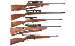 Five Semi-Automatic Rifles with Scopes