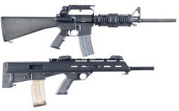 Two Bushmaster Semi-Automatic Longarms