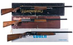 Three Shotguns with Boxes