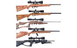 Five Scoped Sporting Semi-Automatic Rifles