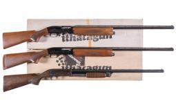 Three Engraved Shotguns