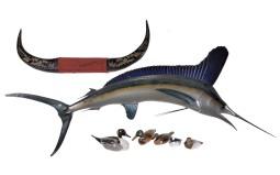 Sailfish, Engraved Bull Horns, and Five Decoy Ducks