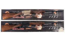 Two Factory Engraved Winchester Model 1895 Lever Action Rifles